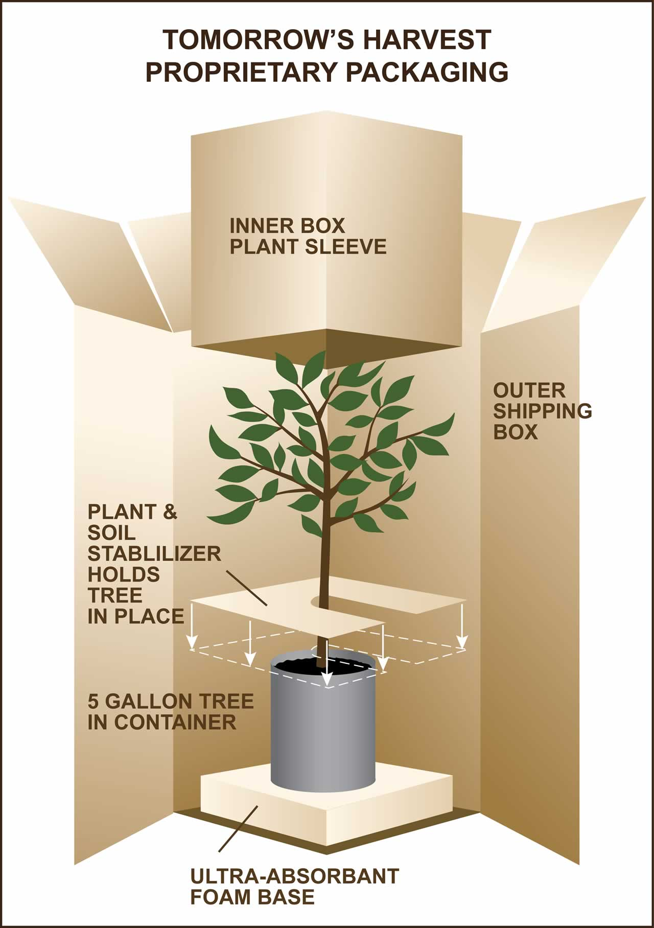 Diagram - Tomorrow's Harvest Proprietary Packaging and Shipping Container