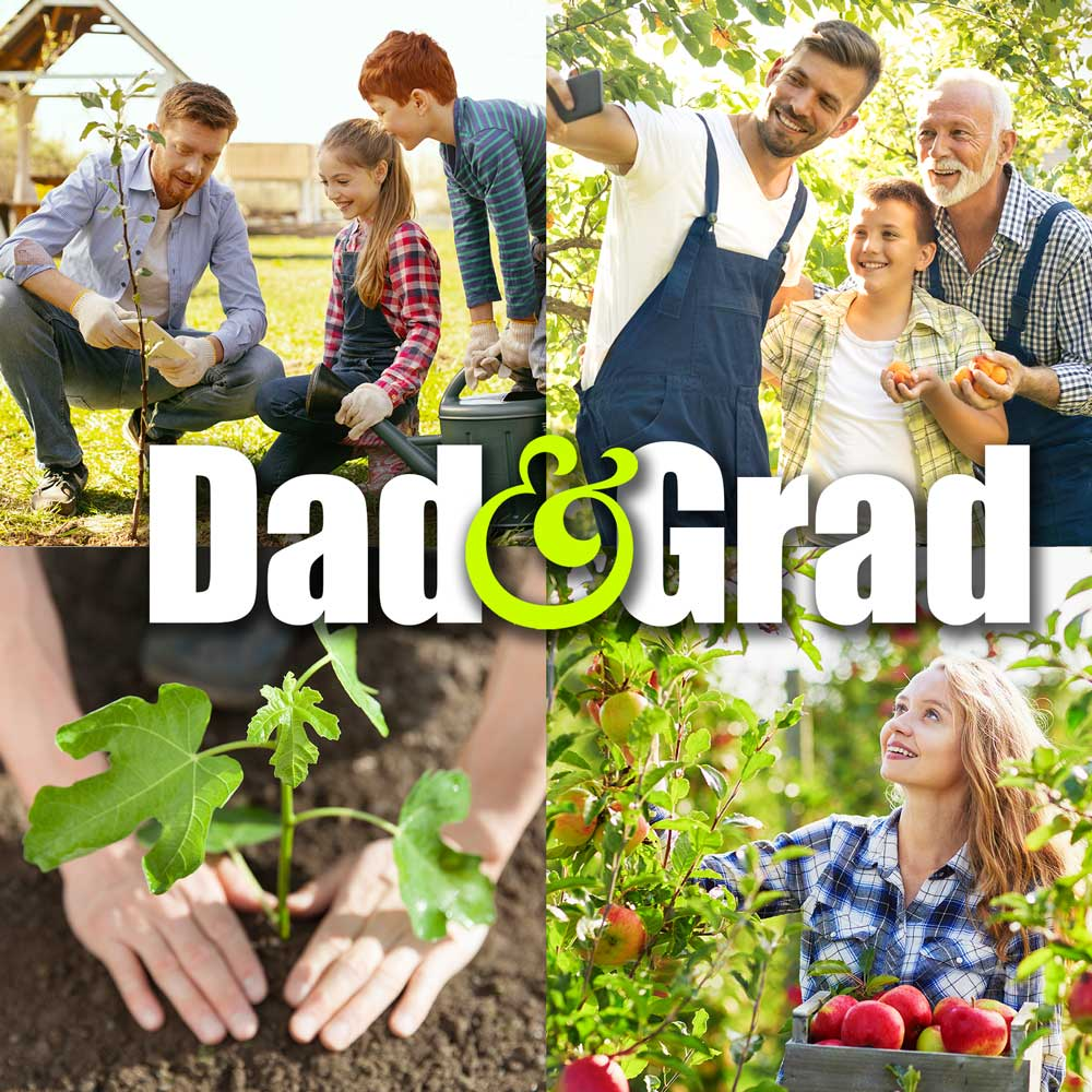 Dad & Grad