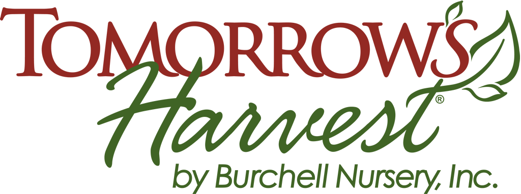 Tomorrow's Harvest by Burchell Nursery Logo