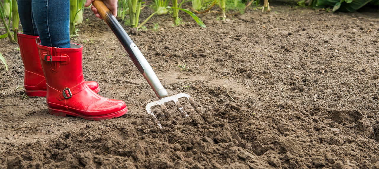 Woman in Red Boots Turning Soil with a Pitchfork