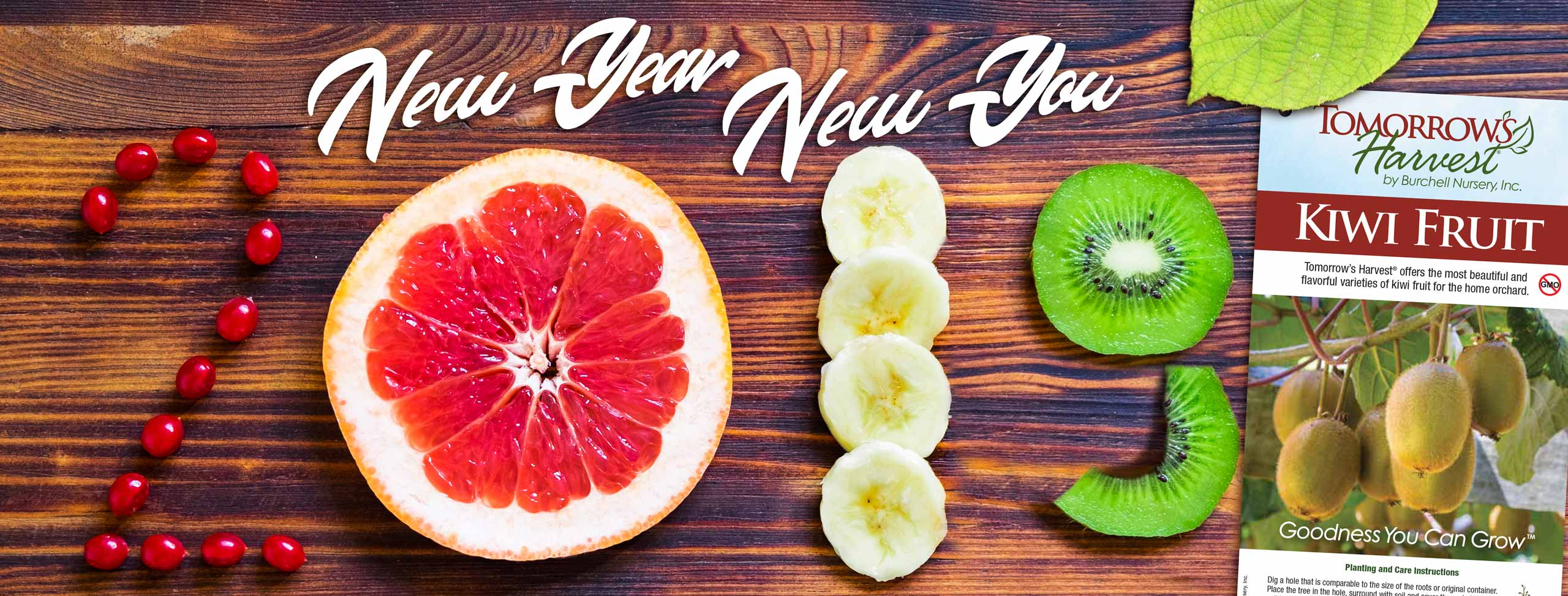 New Year - New You - 2019 - Happy New Year from Tomorrow's Harvest and Burchell Nursery